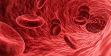 Blutkrebs gemeinsam bekämpfen